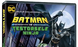 animatie Proanimatie – Stiri despre filme de animatie BATMAN vs TESTOASELE NINJA 264x160