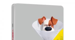 animatie Proanimatie – Stiri despre filme de animatie Singuri acasa 2 300x160